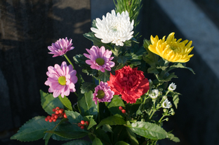 2009flowers